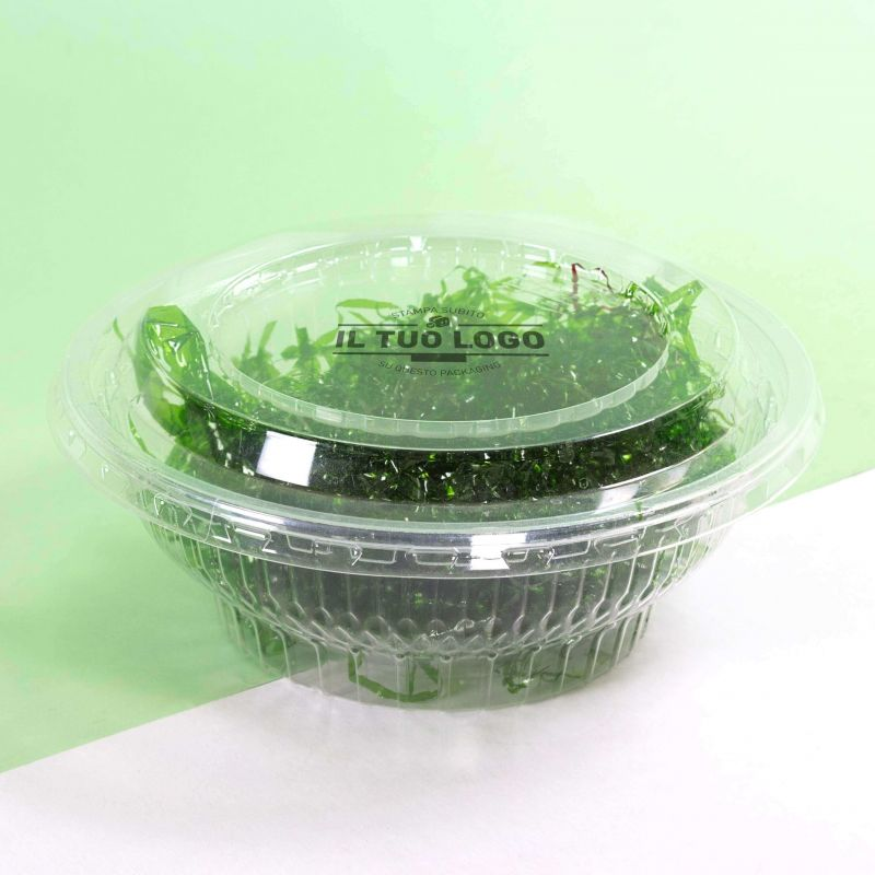 Clear Hinged Container 1000cc