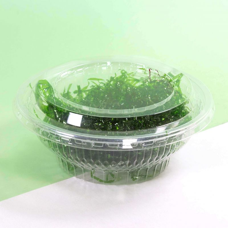 Clear Hinged Container 1000cc - Neutral