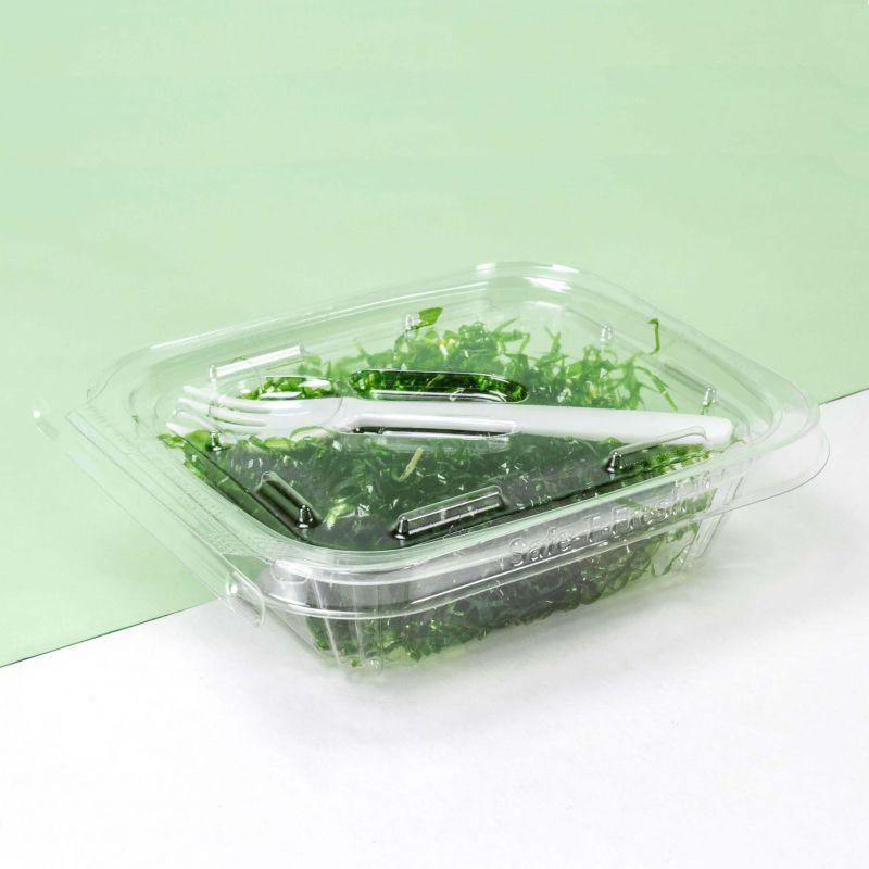 Disposable plastic Safe-T-Fresh boxes 250ml - Neutral