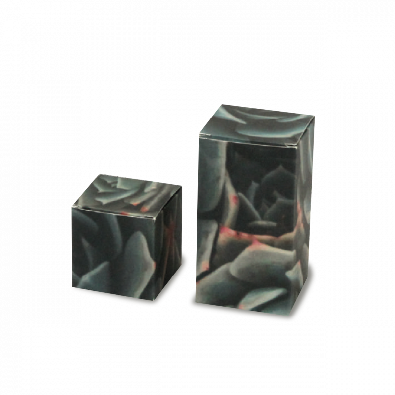 Folding Box Cubo Model 20 x 29 x 4,5 cm