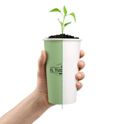 Compostable paper cups customized