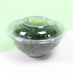 Round Plastic Bowls mod. MC - Customized