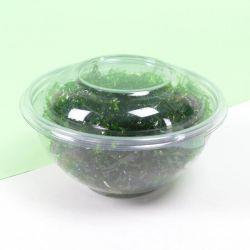 Round Plastic Bowls mod. MC - Neutral
